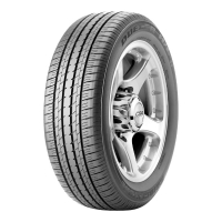 Bridgestone Dueler H/L 33 225/60R18 100H
